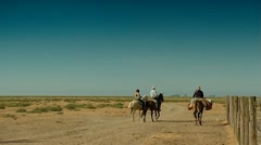 Out of the mares in the Doñana National Park. Stock Footage