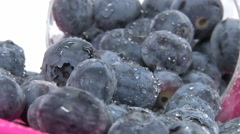 Studio shot of blueberries fruits. Stock Footage