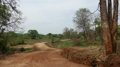 Dirt road at the countryside of Sri Lanka Stock Footage