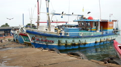 Fishing boat in the harbour of Negombo Stock Footage