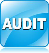 Audit icon Stock Illustration