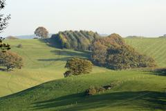 Autumn colours in the Surrey Hills. England - stock photo