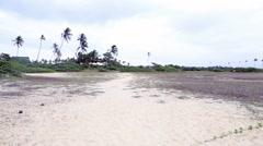 Dunes close to the Praia do Forte in Mata de Sao Joao, Bahia, Brazil Stock Footage