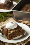 homemade brown gingerbread cake - stock photo