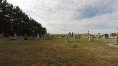 Old Cemetery Dirt Road and Large Tree Stock Footage