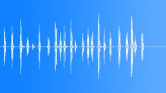 Single Sparrow Sound Effect