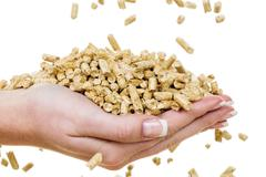 hand with pellets as old natie energy - stock photo