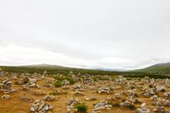 Arctic tundra landscape Stock Photos