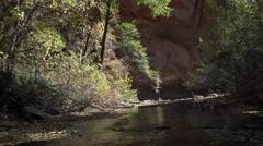 4K Arizona Oak Creek Canyon Stock Footage