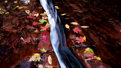 Water flowing in a crack surrounded by fallen leaves  Stock Footage