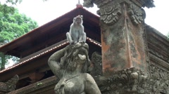 Macaque monkey climbing on Bali temple figures Stock Footage