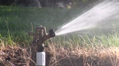 Lawn Sprinkler Watering Grass Stock Footage