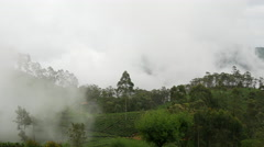 Time lapse cloudy moving over a tea plantations in Sri lanka Stock Footage