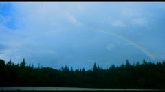 Pine woods time lapse rainbow Stock Footage