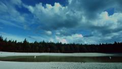 Pine woods near lake time lapse Stock Footage