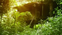 Small wooden house in the forest. thailand, phuket Stock Footage