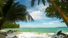 The shore of a tropical beach with palm trees Stock Footage