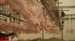 Chicken in the Slaughterhouse Stock Footage