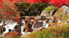 Autumn waterfall on the mountain river. Stock Footage