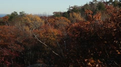 Pan from lake superior to city in autumn Stock Footage