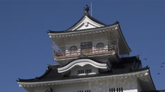 Pigeons Fly Around Toyama Castle in Japan Stock Footage