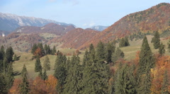 Mountain view with colorful deciduous trees and conifer trees, in autumn season. - stock footage