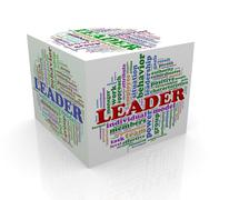3d cube word tags wordcloud of leader Stock Illustration