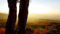 Overlooking colorful autumn landscape. forest trees background Stock Footage