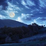 trees near valley in mountains at night - stock photo