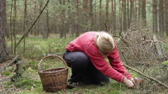 Woman mushroom picking in forest Stock Footage