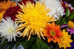 bouquet of autumn flowers - stock photo