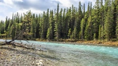 Bow river - stock footage
