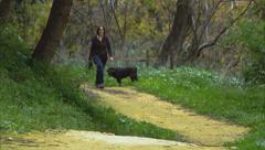 Walking Path Loneliness Dog Friendly Stock Footage