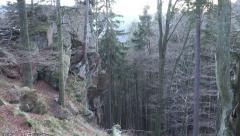 4k Tilt up big rocks forest in mountain range Harz Stock Footage