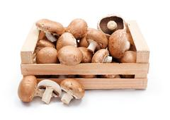 cultivated brown champignons in wooden crate - stock photo