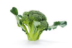 Ripe broccoli crop Stock Photos