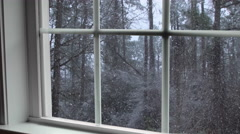 Snowing in wooded area seen thru window Stock Footage