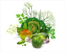 greens - stock illustration
