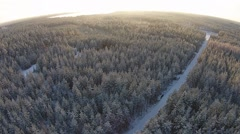 Winter forest high above Stock Footage