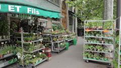 Florists on Quai de la Megisserie, Paris, France, Europe Stock Footage