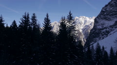 Aerial - Moving up, above the spruce trees in Julian Alps Stock Footage