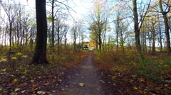 A nice walk in the forest in autumn - stock footage