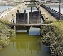 Irrigation ditch Stock Photos