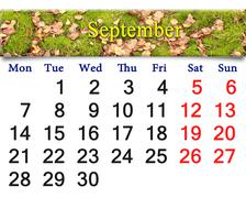 Calendar for september of 2015 with the moss and leaves Stock Illustration