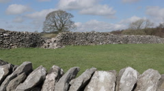 Stock Video Footage of Dry Stone Walls at Litton, Derbyshire, England, Uk, Europe
