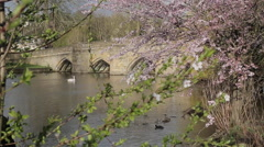 River Wye & Bridge, Bakewell, Derbyshire, England, Uk, Europe Stock Footage