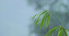 Monsoon season in Thailand, rainy weather  - stock footage
