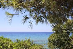Aegean Sea through the beautiful vegetation. Stock Photos