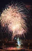 Beautiful fireworks in the night sky. Stock Photos