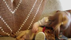 Toddler girl kisses puppy Stock Footage